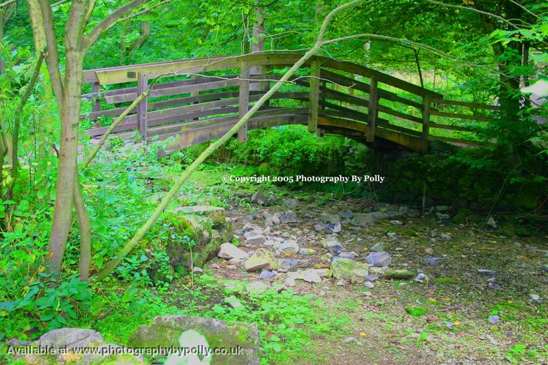 Photography by Polly (Bridges:Empty River)